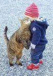 kat en kind